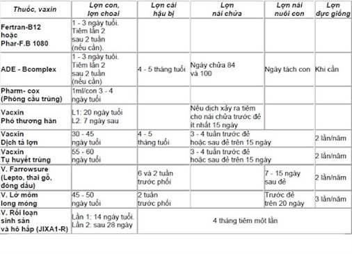 Huong-dan-lich-tiem-vacxin-cho-lon-an-toan-va-hieu-qua-nhat 1654538125