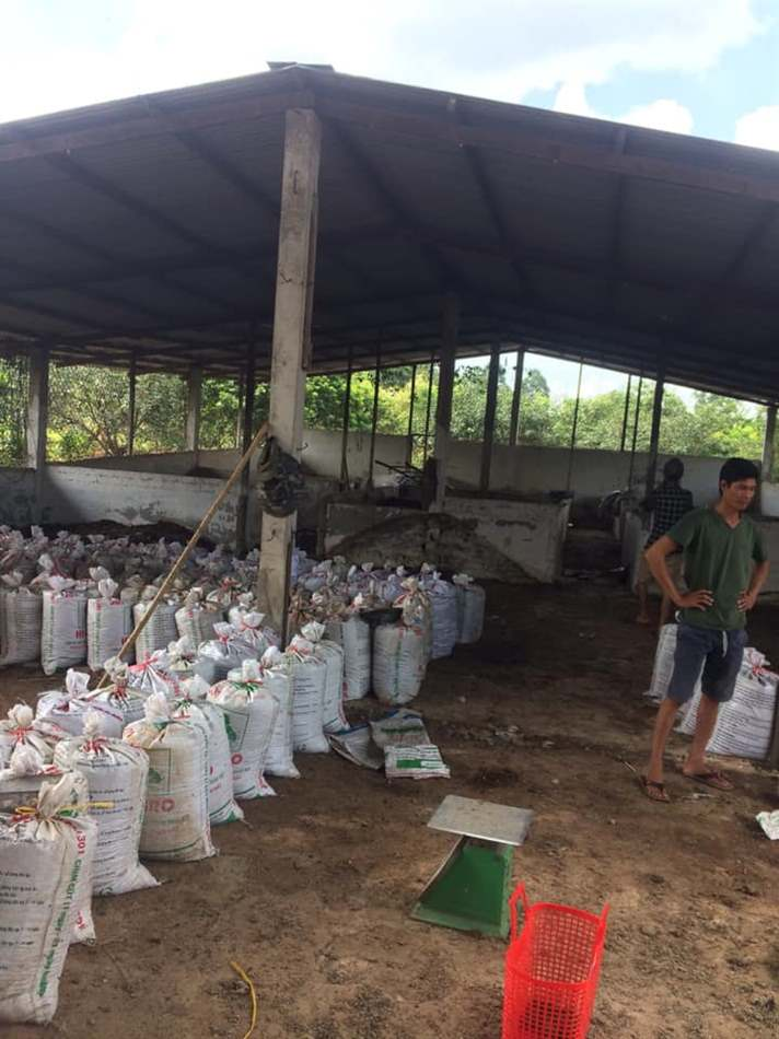 bón phân hữu cơ cải tạo đất